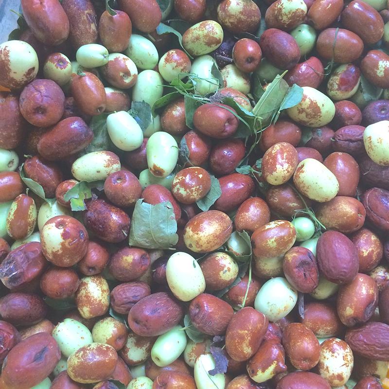 なつめの実 棗(なつめ、ナツメ)のなつめチップスはとても優秀、カリウム・亜鉛・葉酸・鉄分・ポリフェノールがたっぷり  なつめいろの棗(なつめ、ナツメ)なつめチップ(なつめチップス)はとても優秀、プロリン・ポリフェノールたっぷりでアンチエイジングに良い