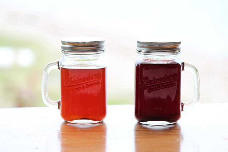 なつめいろの棗で作ったナツメチップ(ナツメチップス)は鉄分・葉酸がたっぷり、美肌に効く。そして妊娠(妊活)から更年期障害まで効果的。 なつめいろのハーブティーは美肌効果あり。なつめ&ハーブのコーディアルシロップ
