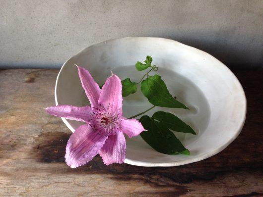 toshie fukuokaはフラワーデザインを学んだ後2013年よりフリーのフローリストとして活動し草花をより身近に感じて頂けるよう様々な形で「暮らしに寄り添うお花」の提案をしています。