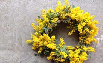 お花のある生活「春を告げるお花・ミモザ」