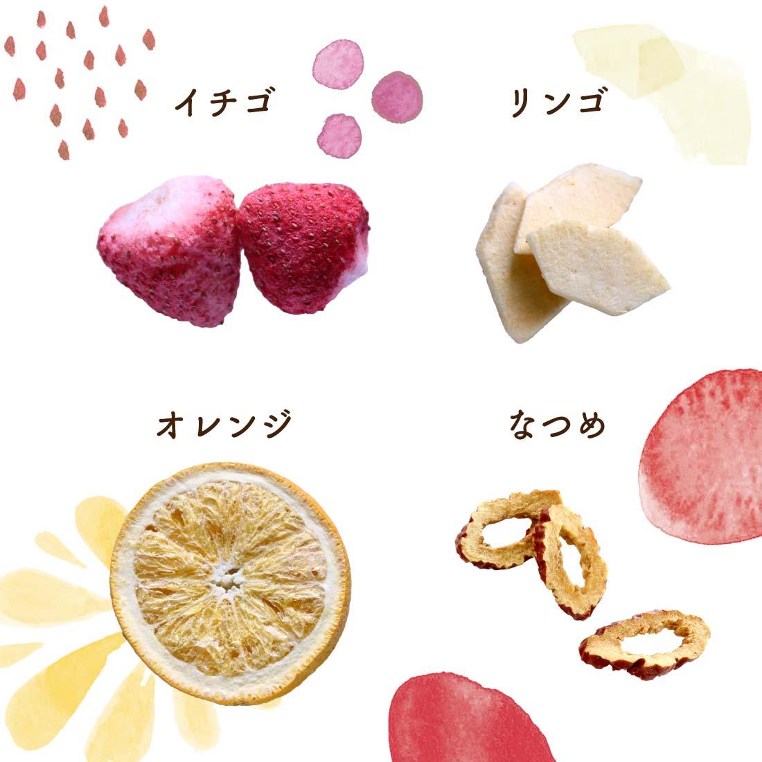 フルーツチップ各種 イチゴ リンゴ オレンジ なつめ
