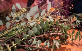 お花のある生活「秋の茶会」